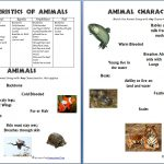 Animals And Their Characteristics (Free Worksheet)   Homeschool Den | Free Printable Worksheets On Vertebrates And Invertebrates