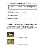 Animals Worksheet   Free Esl Printable Worksheets Madeteachers | Los Animales Printable Worksheets