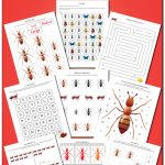 Ant Printables Pack {Insect Printables}   Gift Of Curiosity | Ant Worksheets Printables
