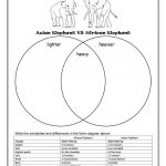 Asian Elephant Vs African Elephant Worksheet   Free Esl Printable | Free Printable Worksheets On Africa