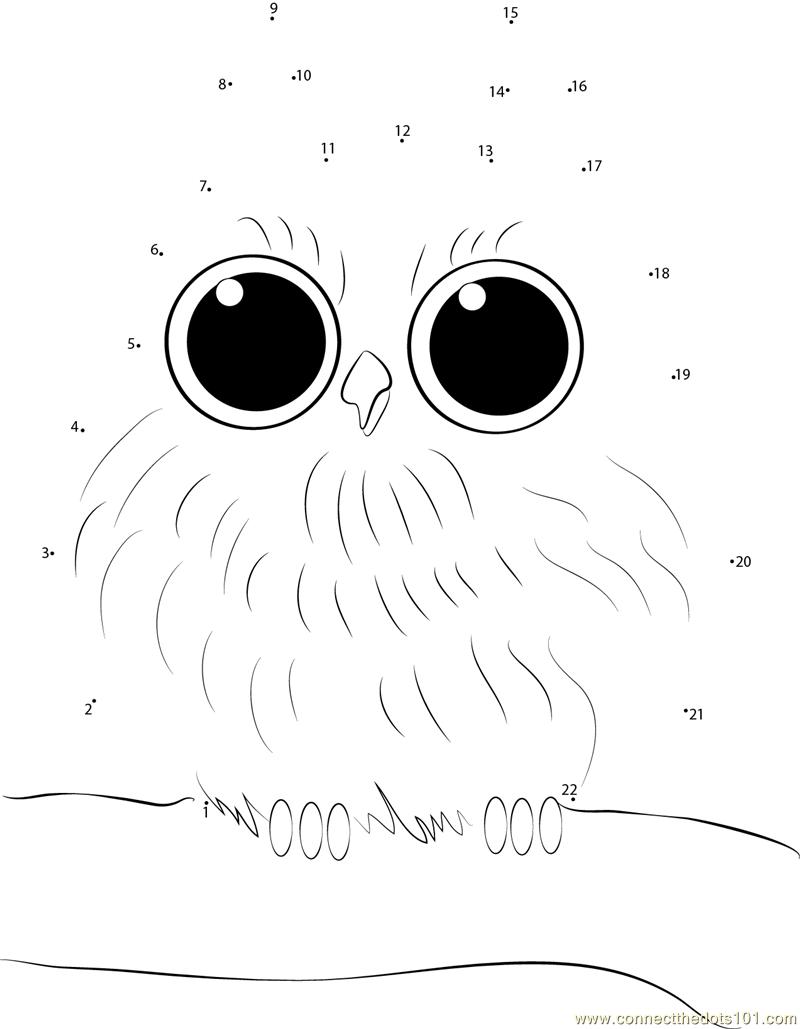 Baby Owl Dot To Dot Printable Worksheet - Connect The Dots | Owl Babies Printable Worksheets