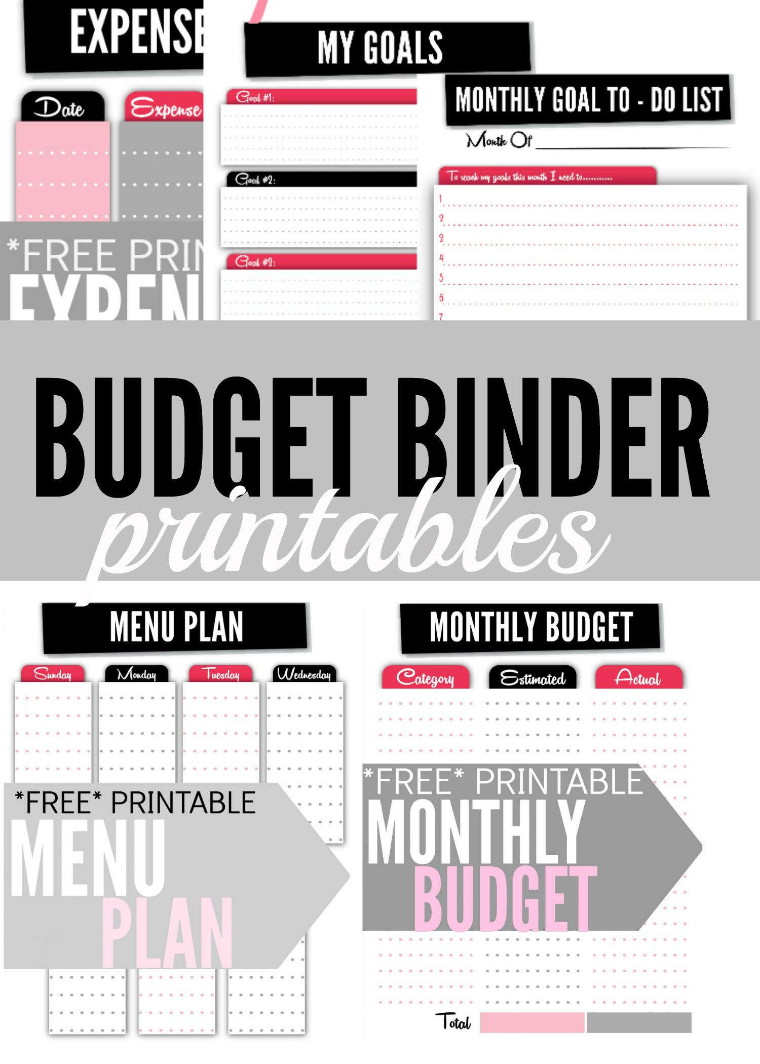 Budget Binder Printables - Single Moms Income   Printable Budget Binder Worksheets