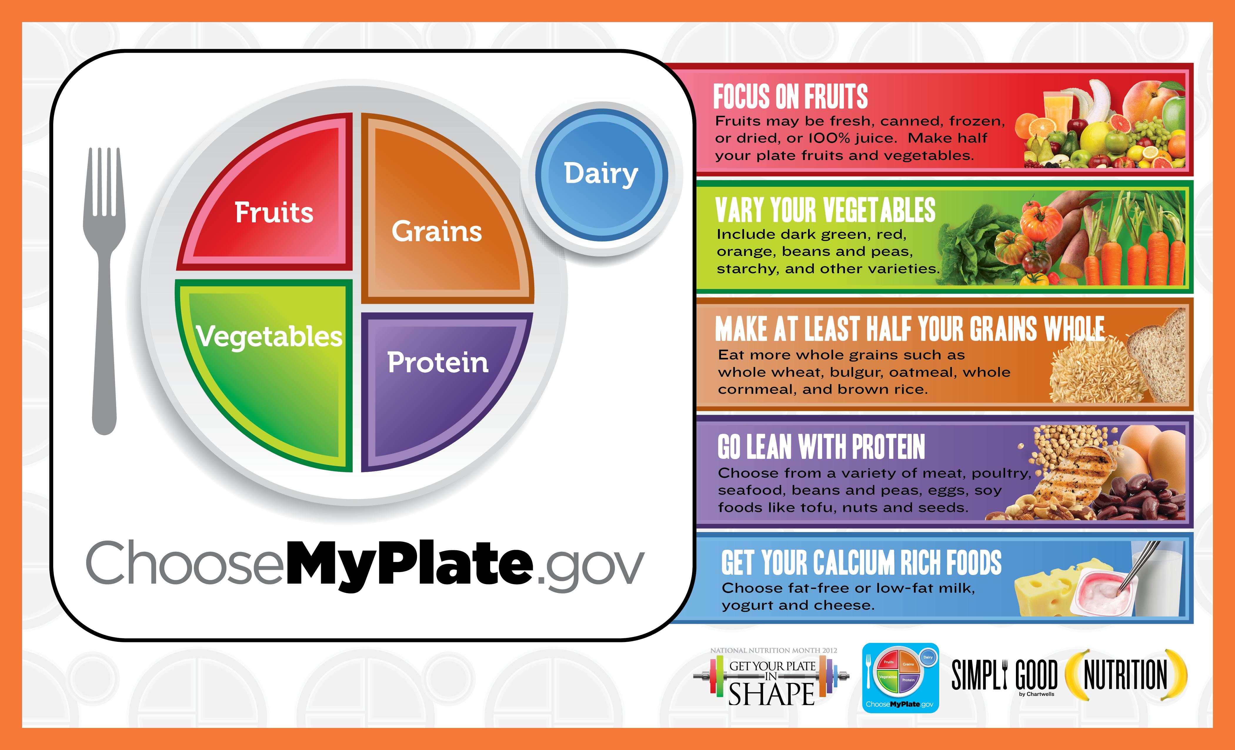 Choosemyplate Gov Food Tracker   Healthy Hesongbai   Choose My Plate Printable Worksheets