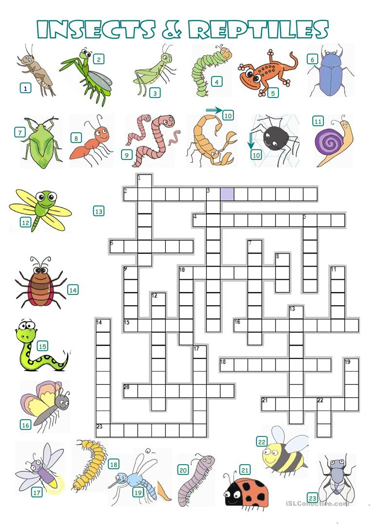 Crossword - Insects And Reptiles Worksheet - Free Esl Printable | Free Printable Reptile Worksheets