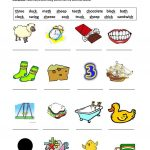 Digraphs Sh,ch,th,ck,ng Worksheet   Free Esl Printable Worksheets | Free Printable Ch Digraph Worksheets