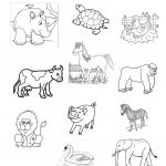 Farm Animals Worksheet   Free Esl Printable Worksheets Madeteachers | Farm Animals Printable Worksheets