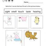 Five Senses Worksheet For Kids   Free Kindergarten Learning Worksheet | Science Worksheets For Kindergarten Free Printable
