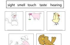Science Worksheets For Kindergarten Free Printable