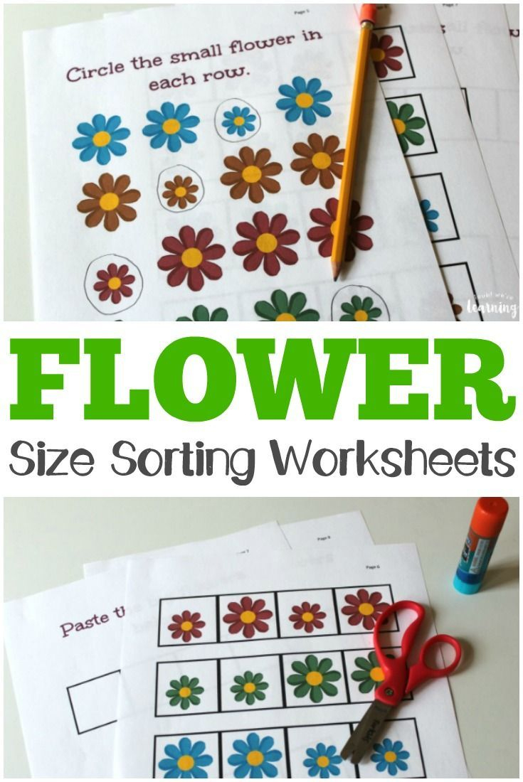 Flower Size Sorting Printables For Kids! | Matching And Sorting | Big And Small Ideas Printable Worksheets
