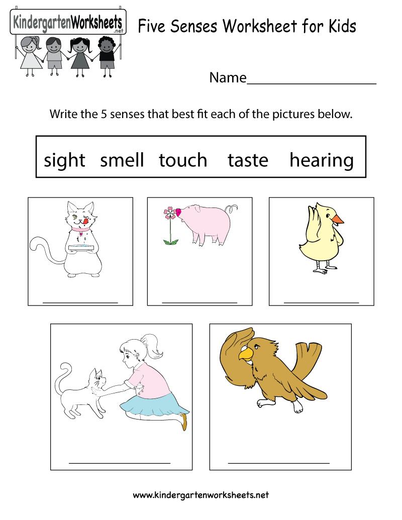 Free Printable Five Senses Worksheet For Kids | Free Printable Worksheets Kindergarten Five Senses