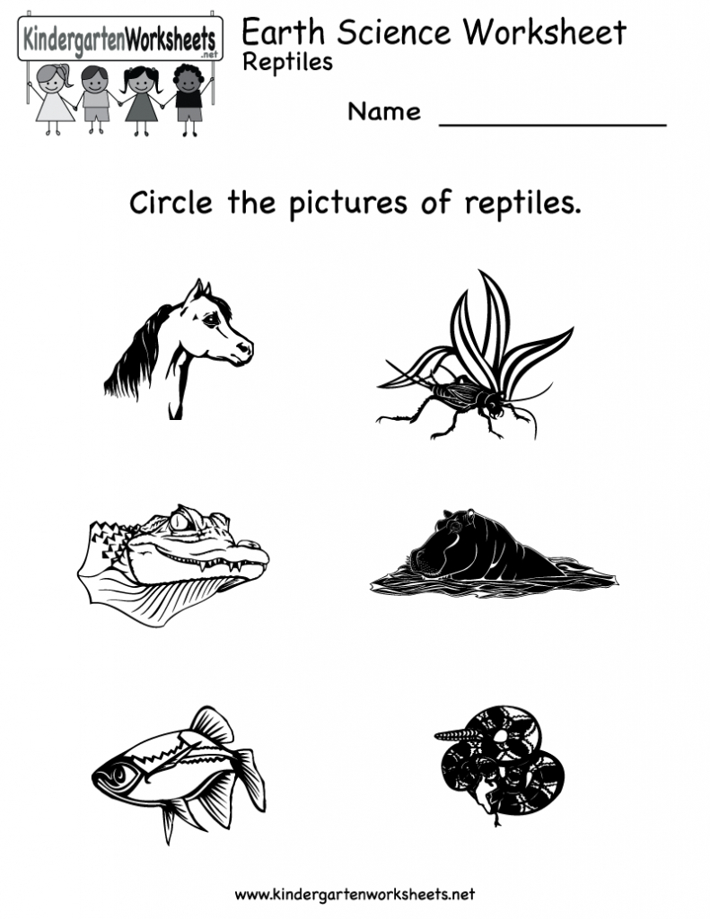 Free Printable Science Worksheets For Kindergarten To Free - Math | Free Printable Reptile Worksheets