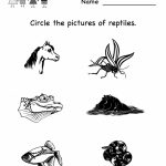 Free Printable Science Worksheets For Kindergarten To Free   Math | Free Printable Worksheets For Kids Science