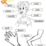 Free Printables For Kindergarten – With Learning Activities Also | Free Printable Worksheets Preschool Body Parts