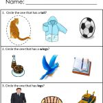 Free Printables For Receptive Language Skills! Available At   Free Printable Autism Worksheets