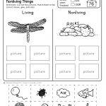 Freebie! No Prep Kindergarten Science Doodle Printables | T E A C H | Free Printable Worksheets For Kids Science
