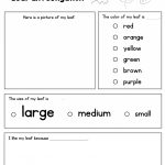 Leaf Investigation Printable Worksheet | A To Z Teacher Stuff | Teacher Printable Worksheets