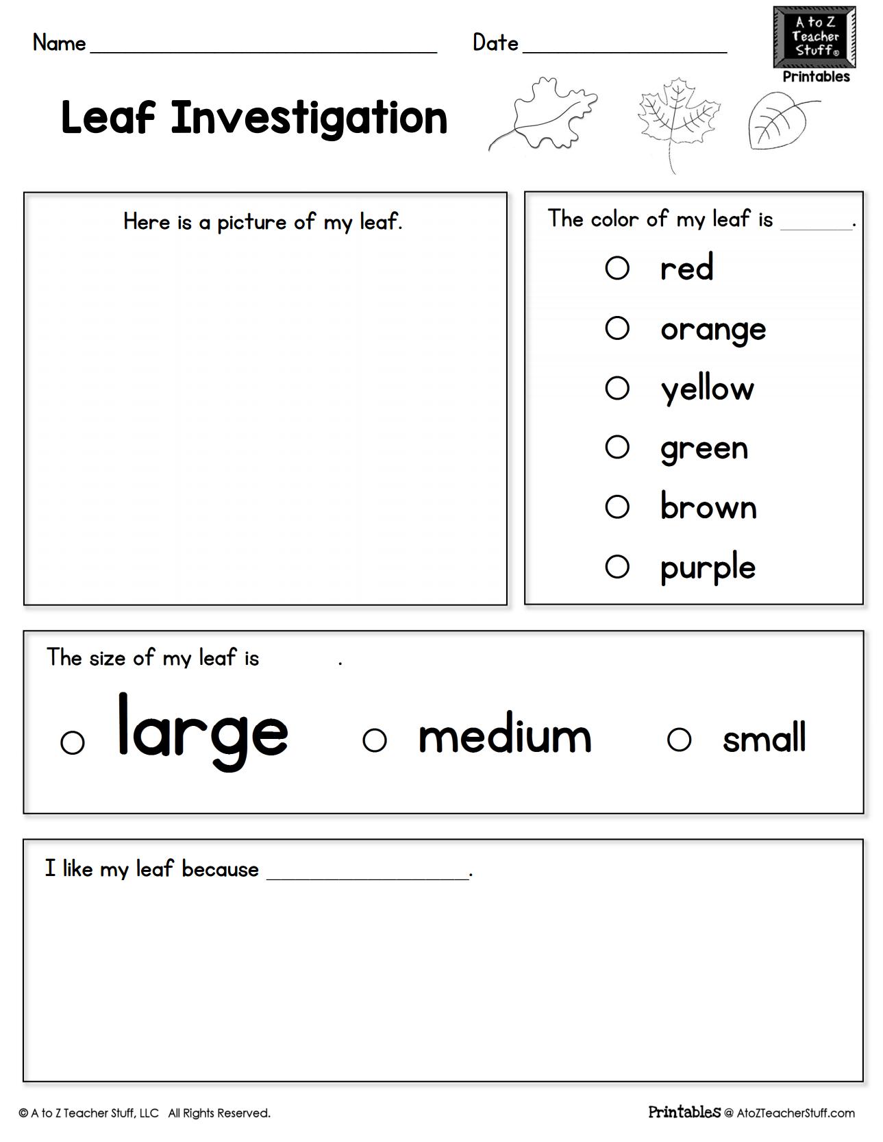 Leaf Investigation Printable Worksheet | A To Z Teacher Stuff | Teacher Printable Worksheets