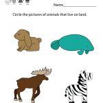 Life Science Animal Worksheet   Free Kindergarten Learning Worksheet | Science Worksheets For Kindergarten Free Printable