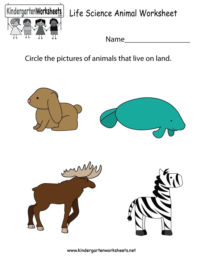 Life Science Animal Worksheet - Free Kindergarten Learning Worksheet | Science Worksheets For Kindergarten Free Printable