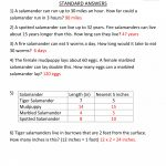 Math Worksheet: Average Math Problems Context Clues Worksheets | 4Th Grade Equivalent Fractions Printable Worksheets