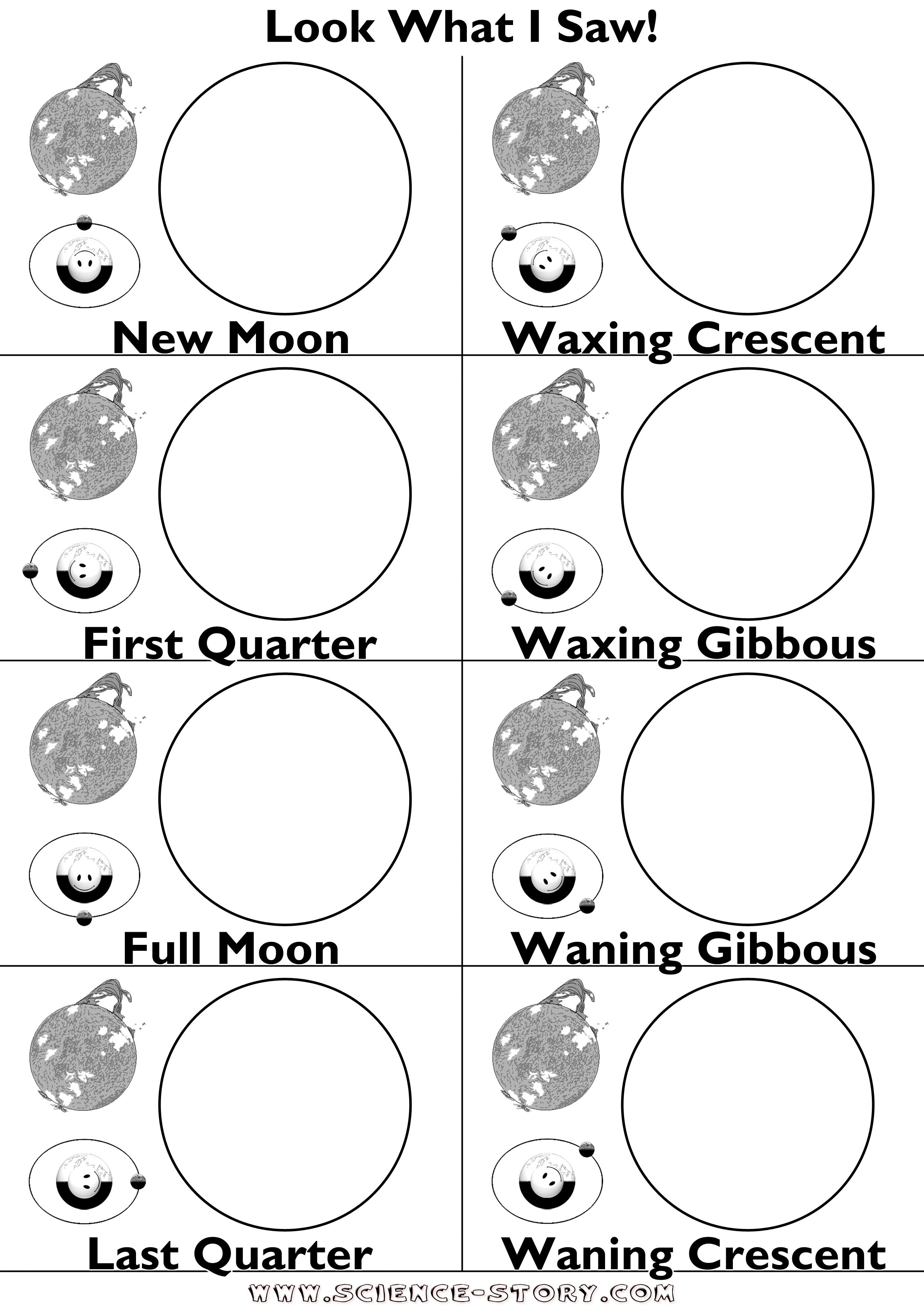 Moon Phases Worksheet - Google Search | Science Moon | Moon Phases | Phases Of The Moon Printable Worksheets