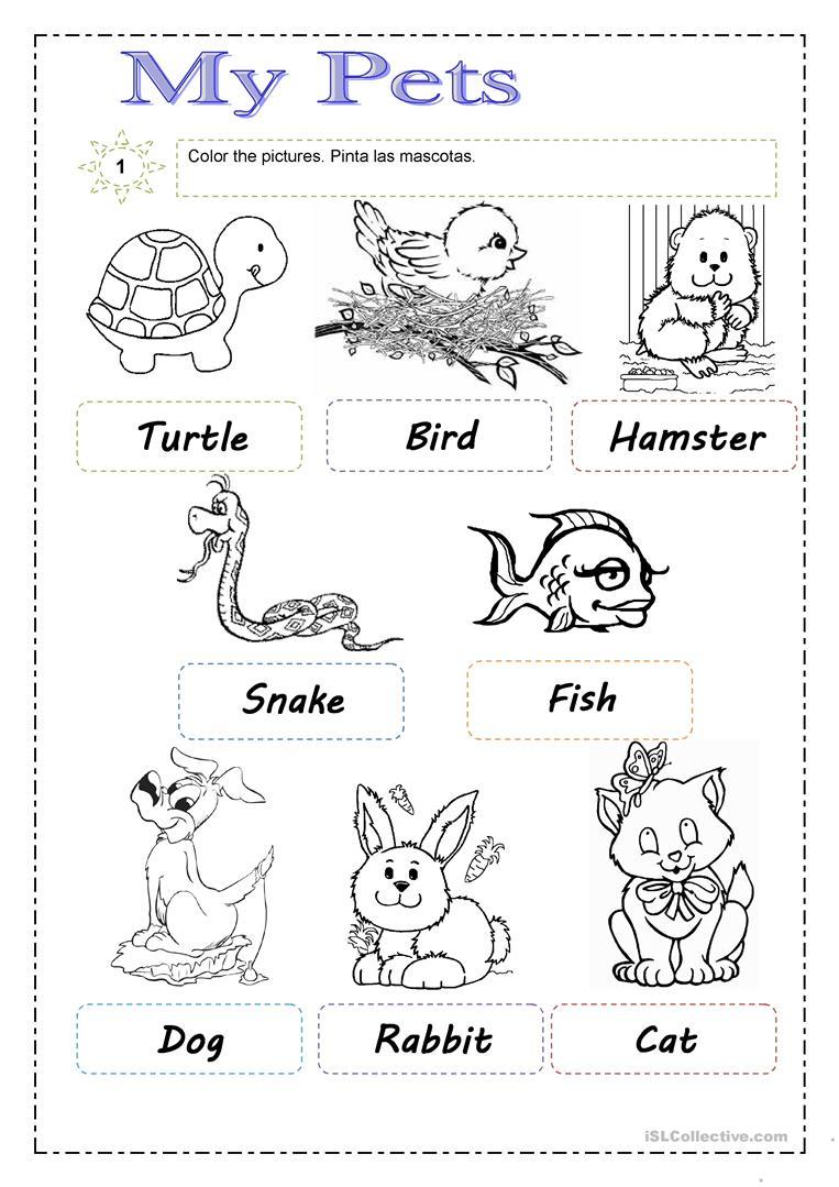 Pets Worksheet - Free Esl Printable Worksheets Madeteachers | Pets Worksheets Printables