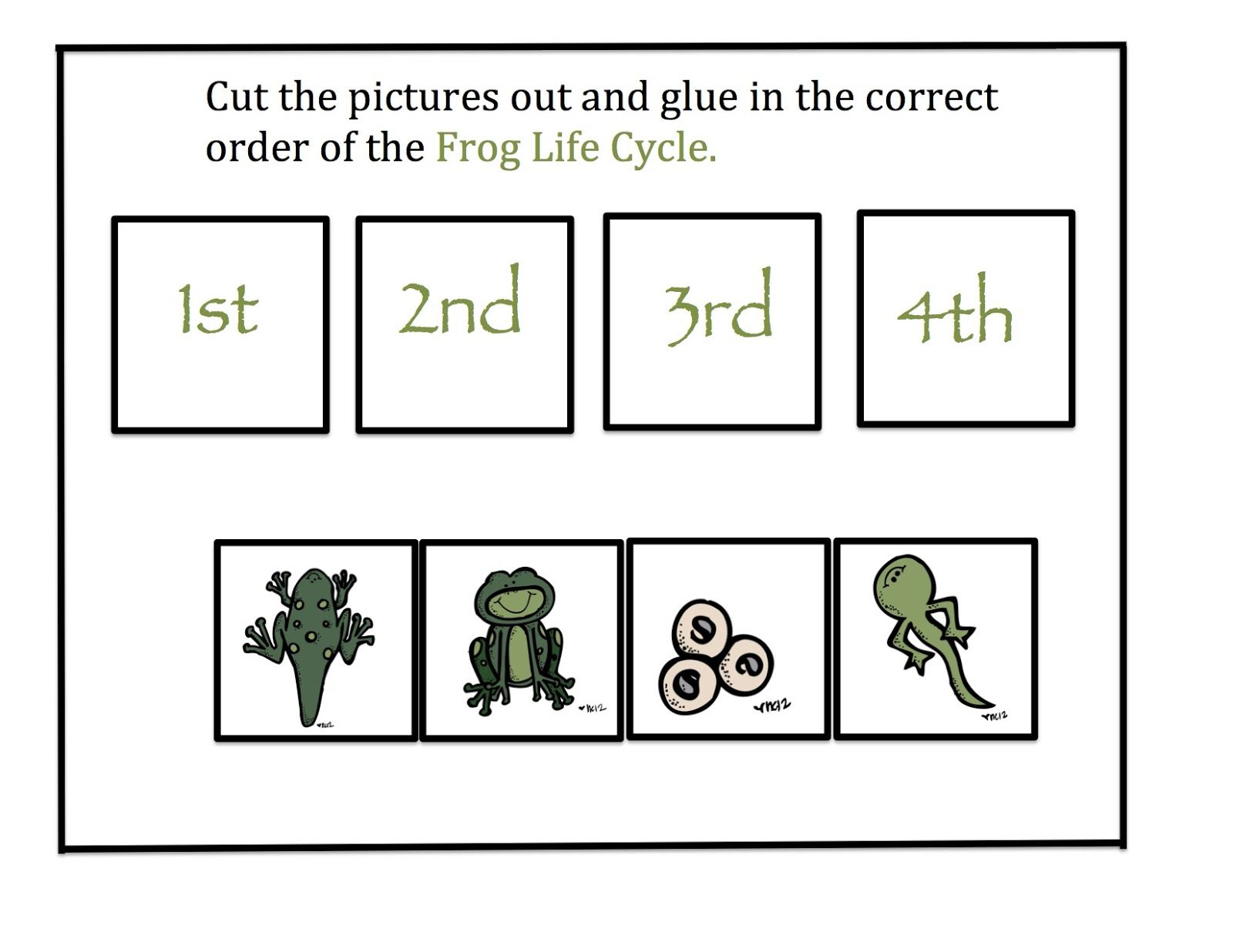 Preschool Printables: Frog Life Cycle | Pond Theme | Lifecycle Of A | Life Cycle Of A Frog Free Printable Worksheets