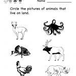 Science Printables For Kids | Life Science Animal Worksheet   Free | Science Worksheets For Kindergarten Free Printable