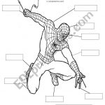 Spiderman Body Parts   Esl Worksheetsarajbigg87 | Spiderman Worksheets Free Printables