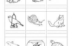 Free Printable Pet Worksheets
