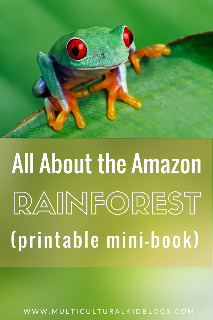 The Amazon Rainforest For Kids With Free Printable Mini-Book | Rainforest Printable Worksheets