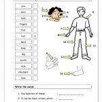 Vocabulary Matching Worksheet   Body Parts (1) Worksheet   Free Esl | Free Printable Worksheets Kindergarten Body Parts