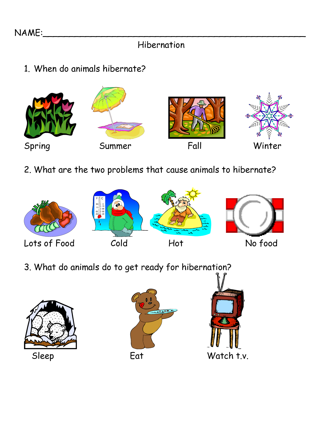 Worksheets On Bear Hibernation - Google Search | Bear Hibernation | Free Printable Hibernation Worksheets